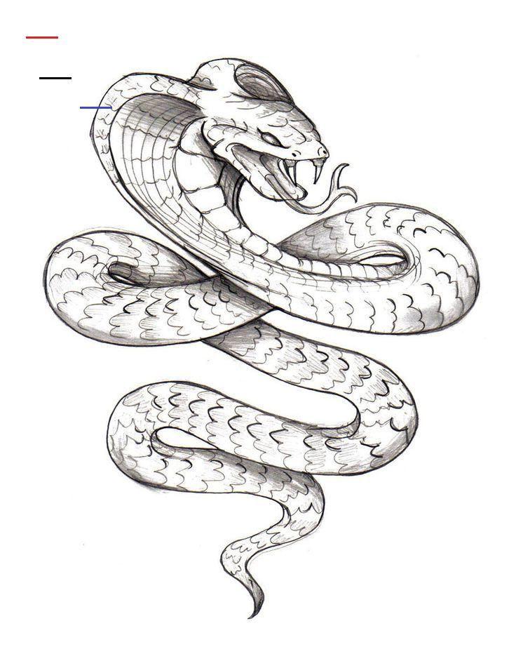 Рисунки карандашом змея на дереве