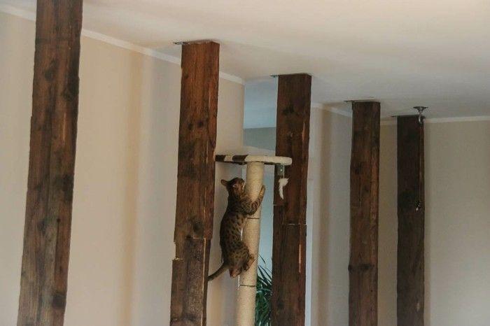 les 25 meilleures id es de la cat gorie kratzbaum selber. Black Bedroom Furniture Sets. Home Design Ideas