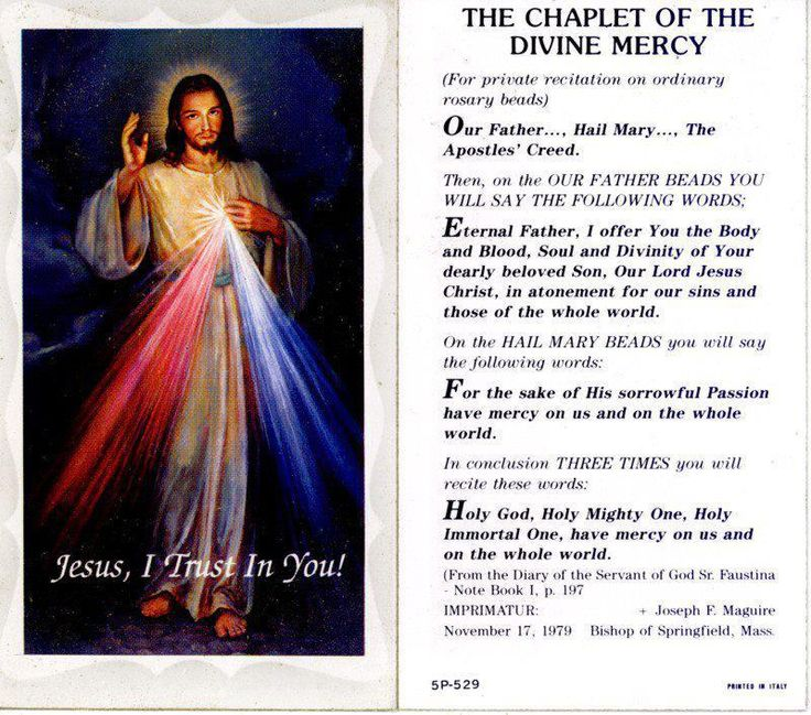 luke presents jesus as the divine saviour religion essay In the gospel of luke, we find a blending of these two ideas luke, like matthew, makes use of the apocalyptic section in mark's gospel but with certain modifications the nearness of the event is not stressed as much, and luke recognizes that there is a sense in which the kingdom is already present.