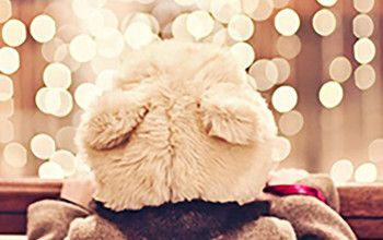 A Parkside Christmas - The Baglioni London is perfectly located to enjoy this magical time and is inviting you to spend A Parkside Family Christmas throughout December. Stay in one of The Baglioni's stunning and generous family suites/inter-connecting rooms for a memorable build-up to the festive season.