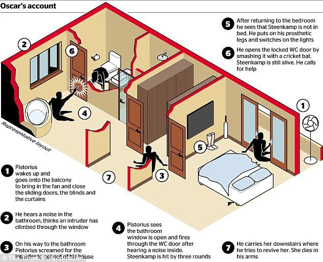 oscar pistorius bathroom photos   The crucial 17 minutes: Pistorius murder trial witness claims there ...
