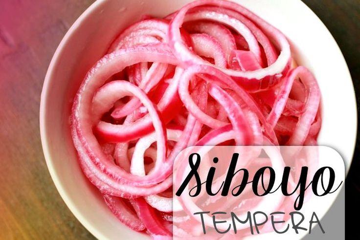 Siboyo tempera zijn heerlijk gemarineerde (rauwe) rode uien. Door het marineren in de azijn raken de uien hun vervelende nasmaak kwijt. Je zult ze dus niet 'nog de hele dag proeven', zo…