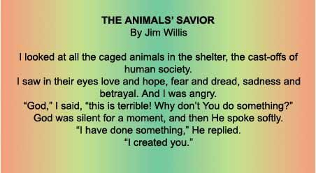 *~*Save and Protect God's Beautiful Innocent Creatures.  Your voice will be heard. Take Action to See Great Results! Be their HERO!*~*