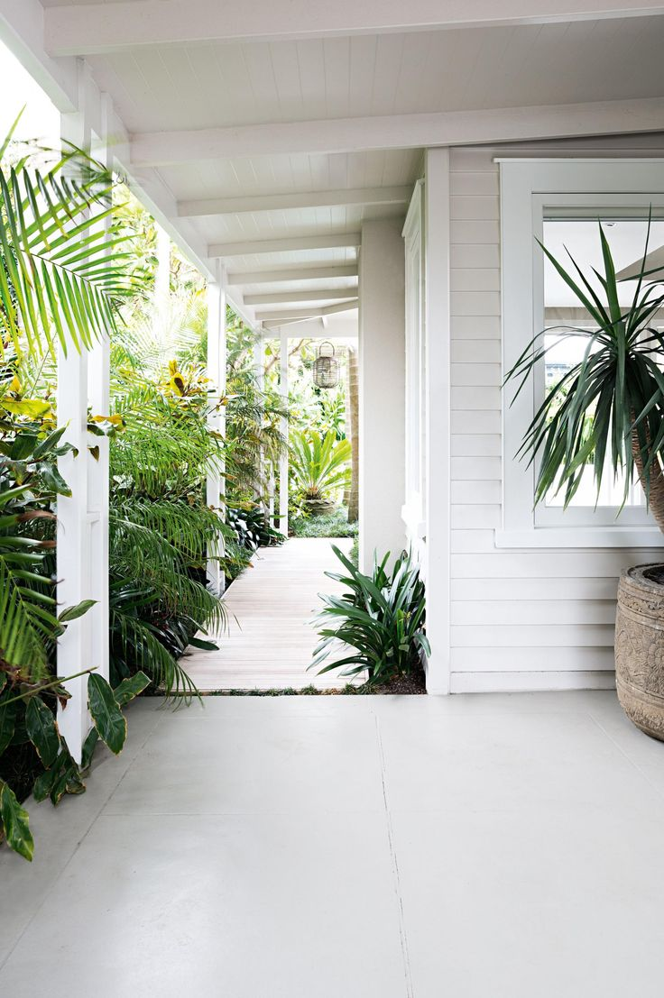 palms plants porch white weatherboard porch garden