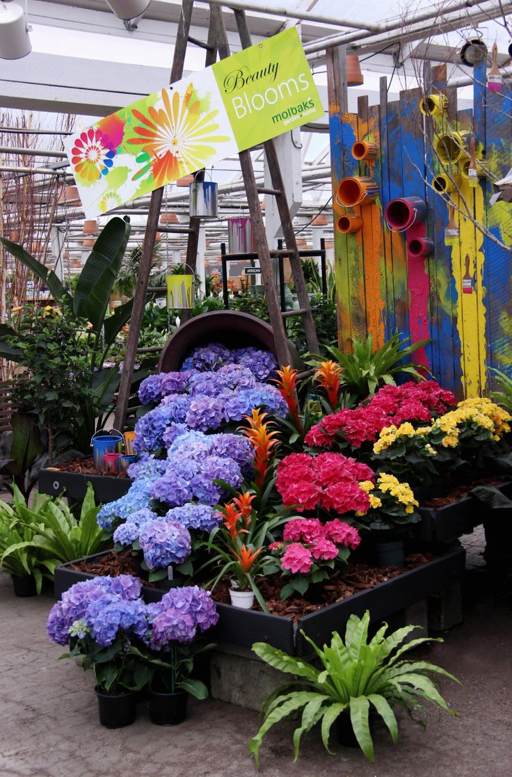 Spring Is Here Once Again At Molbaku0027s! Garden Center ...