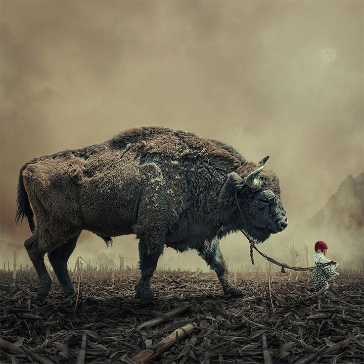 http://www.thisiscolossal.com/2013/11/surreal-photo-manipulations-by-caras-ionut/