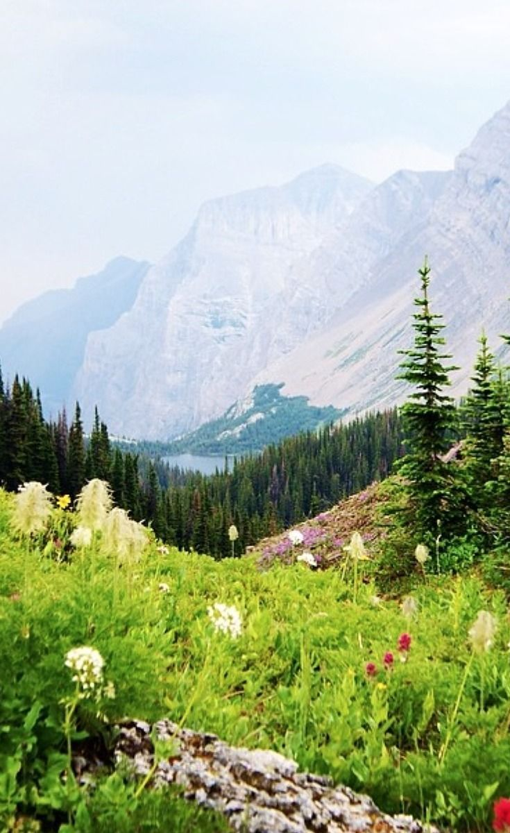 21 Walks In Alberta That Will Take Your Breath Away