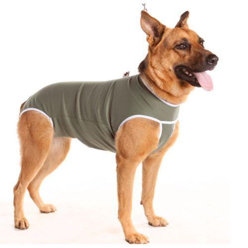 Roupa Pós-Cirúrgica para Cães (Macho e Fêmea)