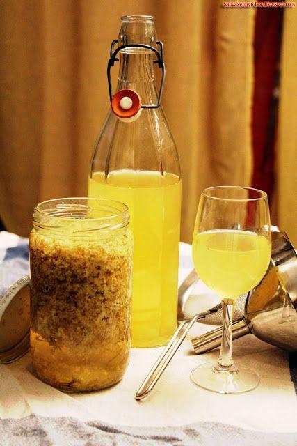 Vin de fleurs de sureau 1l de vin blanc plutôt sec (j'ai utilisé un Menetou-Salon) 200g de sucre 25cl d'alcool pour fruits (40°) Une bonne dizaine de corymbes de fleurs de sureau bien ouvertes