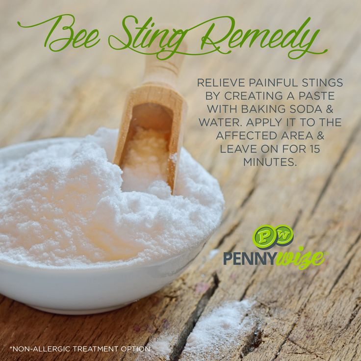 17 Best Images About Get Rid Of Bugs On Pinterest