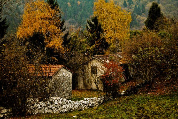 Pin by siҽrrα rαin on Ꮳҽridwҽn's Ꮳ⚬ʈʈɑɠҽ Autumn cozy