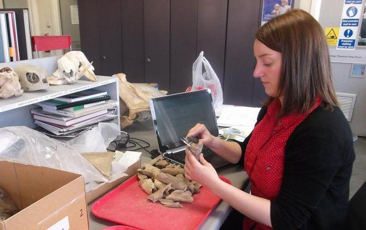 La investigadora Idoia Grau en su laboratorio de la UPV/EHU