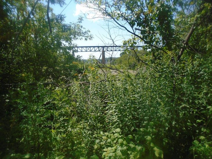 The Seguin River Trestle as seen through these trees off the Fitness Trail off Great north Road Parry Sound august 6, 2017