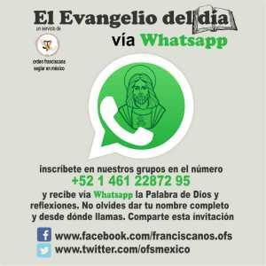 Intégrate a EL EVANGELIO DEL DIA vía WHATSAPP en audio y recibe la Palabra de Dios y reflexiones | El Evangelio del día