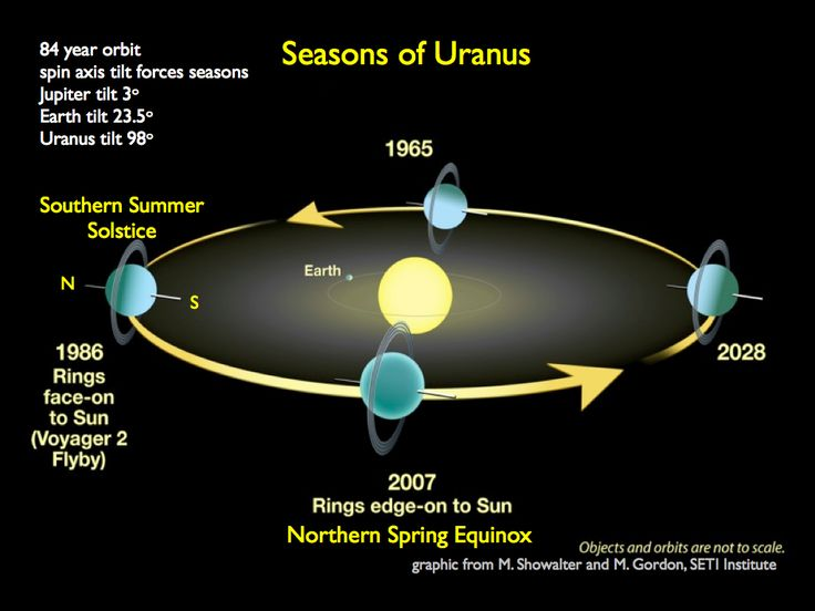 "Seasons of Uranus. The planet is tipped onto its side, so it orbits lying down. This means that each season is twenty years long. (Graphic credit: M.Showalter & M. Gordon, SETI institute) Mona Evans, ""Uranus Facts for Kids"" http://www.bellaonline.com/articles/art27632.aspGoogle Image, Amazing Solar, Planets Uranus, Solar System, Earth Declaration, Seasons, Google Search, Earth Axis, Astronomy"