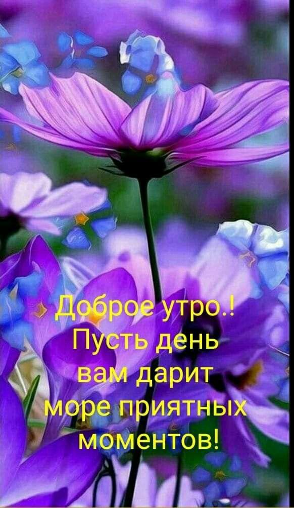 Pin Ot Polzovatelya Yuliya Zhurba Na Doske Dobroe Utro S