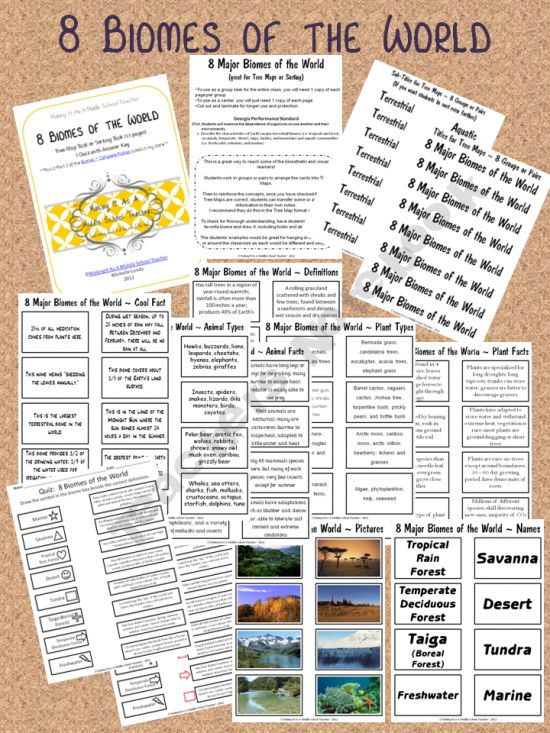 8 Major Biomes of the World {13 pages including a quiz with answer key}