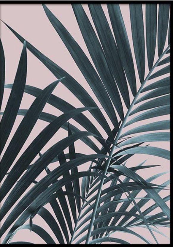 Pin Af Jessie Caldwell Pa Bedroom Plakater Botanisk Plakat Billeder