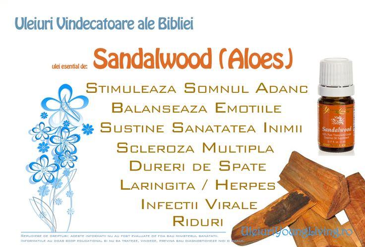 """Uleiul esential de Sandalwood (Aloe). Aloe (Sandalwood) este al 2-lea cel mai scump lemn din lume. Dureaza 40-60 de ani pentru un arbore Sandalwood, sa ajunga la maturitate pentru a putea fi recoltat.  Acest 'Aloe' NU este acelasi cu Aloe Vera, care este o planta din America. Acesta face referire la Aloe din Biblie.  Numeri 24 :5,6   Ioan 19:39 """"Nicodim, care la început se dusese la Isus noaptea, a venit şi el şi a adus o amestecătură de aproape o sută de litri de smirnă şi de aloe."""""""