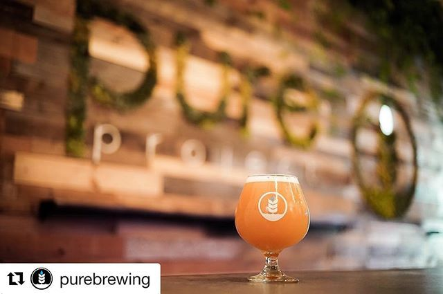 This weeks TapHunter STAFF pick  is this amazing triple IPA, CT3. Cheers! #Repost @purebrewing ・・・ This VERY special beer goes on tap today at 12 noon!  CT3 is a 10.3% Triple IPA brewed with 600lbs of Local, Organic Strawberries from @jrorganicsfarm for the 3rd Anniversary of @commontheory ⠀ ⠀ This beer will go very fast, so bring your growlers and come taste it before it's gone!  Tasting notes are below: ⠀ .⠀ 10.3% ABV | 50 IBU⠀ Hops:  Mosaic, Hallertau Blanc & Simcoe⠀ .⠀ DESCRIPTION:  A…