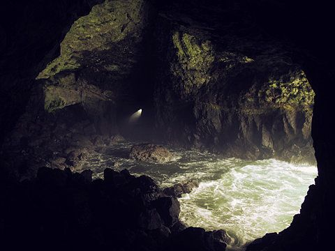 Cave porn.Delaney Allen, Sea Caves, Sea Lion, Camps, Oregon Coast, Bright Lights, Nature Beautiful, Photography, The Sea