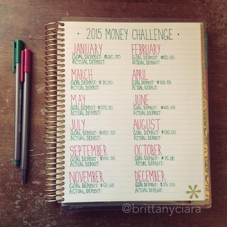 #2015 Money Challenge - #ErinCondren
