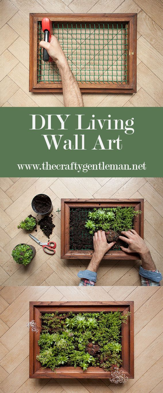 Learn How To Make Your Own Living Wall Art Vertical Garden Click Through To See The Step By Step Tutor Garden Wall Designs Vertical Garden Diy Living Wall Art