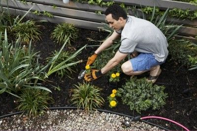 Article: Will a garden add resale value to your home?