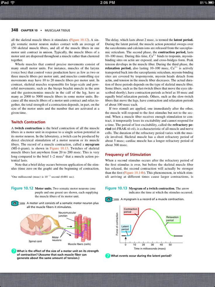 40 best Chapter 10, Muscular Tissue images on Pinterest | Book ...
