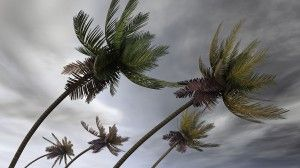 After massive property damage done by hurricane, instead of worrying too much, you just need to call a experienced public adjusters, who will ensure your hurricane claim is given the attention and detail required to obtain quick and accurate insurance settlement.