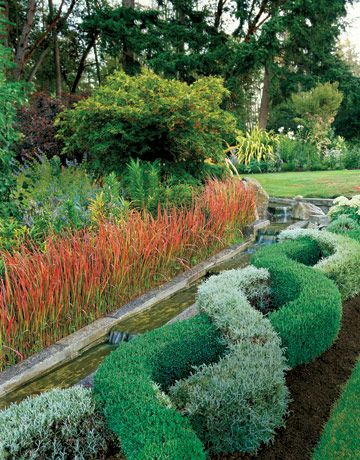 braided bushes topiary