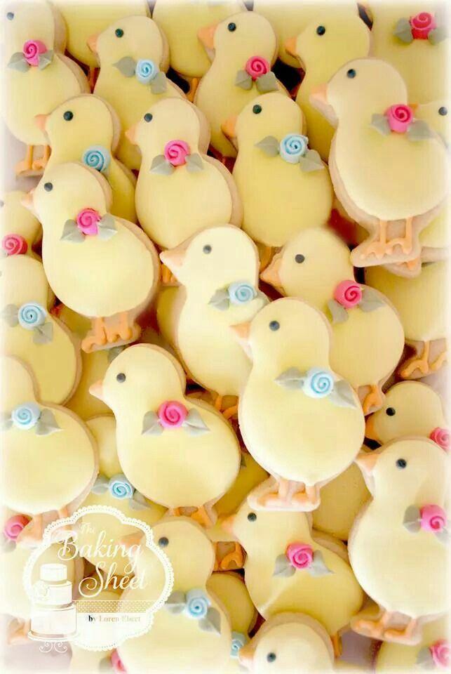 Cute little chicks!