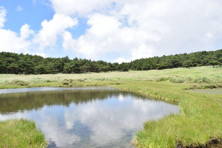 Koshikidake