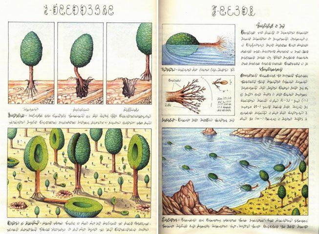 Codex Seraphinianus: guarda un libro come fa un bambino