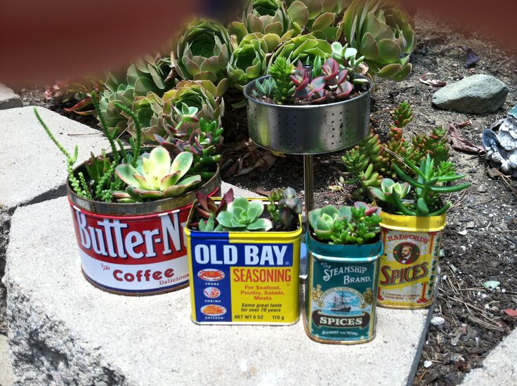 Repurposing old spice tins and coffee cans .