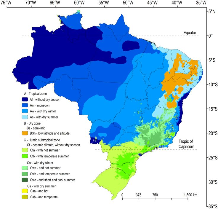Climate classification for Brazil, according to the Köppen criteria