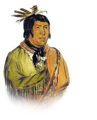 Life of Tecumseh and of His Brother the Prophet: With a Historical Sketch of the Shawanoe Indians (Classic Reprint)