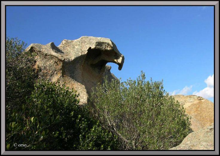 """Roccia """" Aquila"""" - Nord Sardegna"""