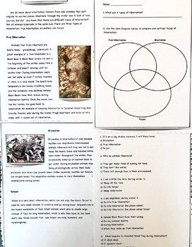 """This is an original, science text on """"Types of Hibernation"""". The text discusses hibernation of mammals, amphibians, reptiles, small animals and unique hibernations that overlap across different categories. This is an ideal elementary science text."""