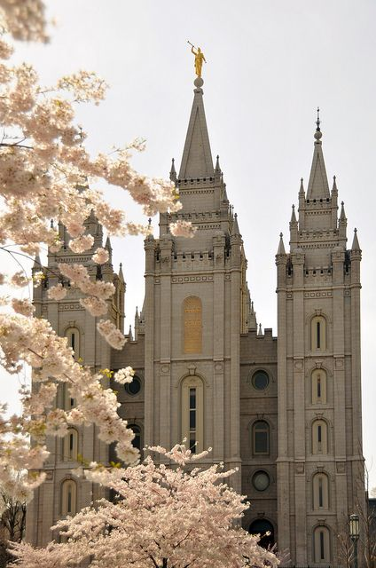 blossoms at Salt Lake City temple. Photo by Ryan Houston Photography