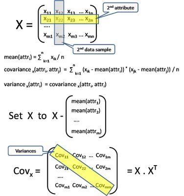 The  Best Principal Component Analysis Ideas On