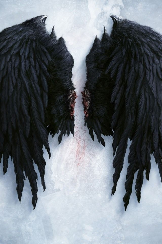 ailes ange noir