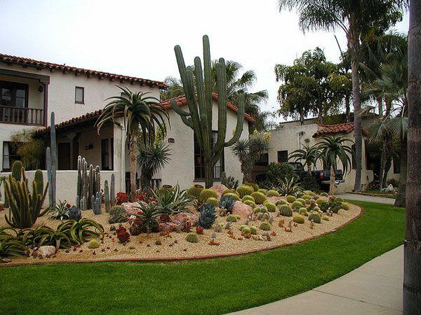 Hermoso jardin con pasto y plantas deserticas garden
