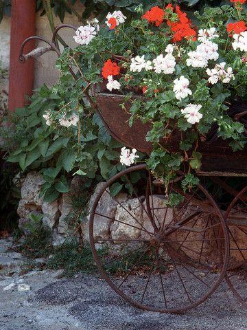 Flower Carriage- St. Paul de Vence(Provence), France