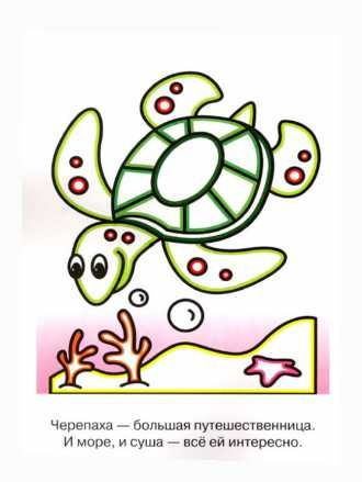 раскраска черепаха для малышей распечатать бесплатно ...