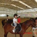 Hayvan sevgisi birlikte vakit geçirdikçe oluşur. At binmeyi öğreniyoruz