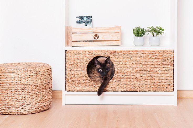 Katze: Schlafplätze – Katzenkörbchen für Ikea Billy Regal – ein Designerstüc… – Katzen / Cat