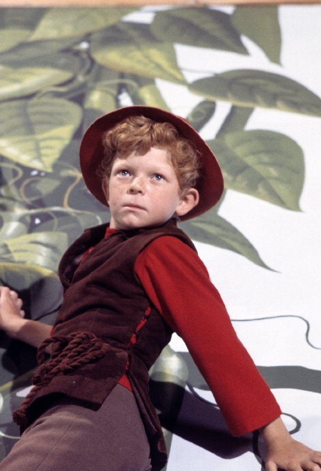 Johnny Whitaker as Jody on Family Affair.  I believe this still was actually taken from a episode of Bewitched when Tabitha made her story books come to life once again.