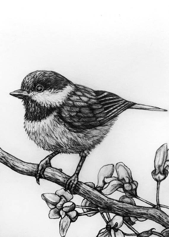 Птицы картинки для выжигания по дереву