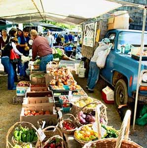 Big buildings and heavy traffic don't preclude tasting regional produce, supporting small farms, ...